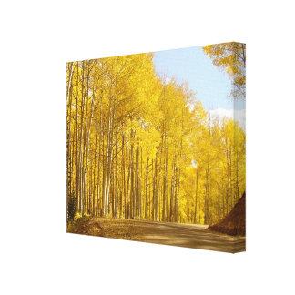 Impressão Em Tela Cores do outono