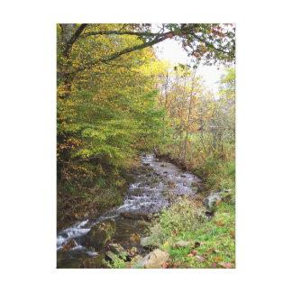 Impressão Em Tela Córrego do outono