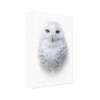 Impressão Em Tela Coruja nevado bonita, sonhadora e sereno