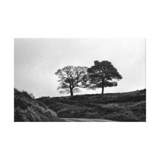 Impressão Em Tela Duas árvores em preto e branco