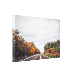 Impressão Em Tela Estrada que atravessa uma paisagem do outono