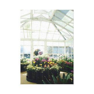 Impressão Em Tela Flores de Victoria
