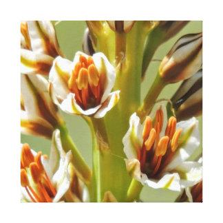 Impressão Em Tela Flores selvagens