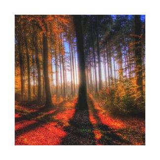 Impressão Em Tela Floresta do outono