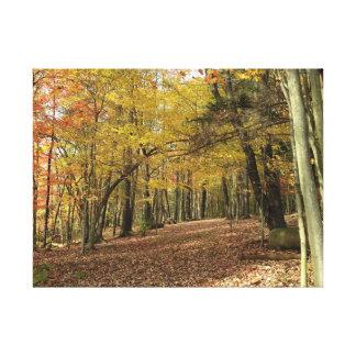 Impressão Em Tela Folha colorida Canfield Ohio do outono da acção de