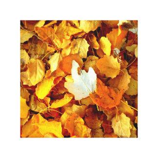 Impressão Em Tela Folha do outono