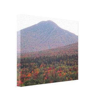 Impressão Em Tela Folhagem de outono bonito de Vermont