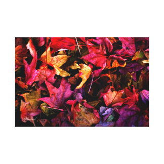 Impressão Em Tela Folhas de outono vermelhas do rubi