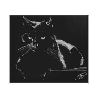 Impressão Em Tela Gato preto