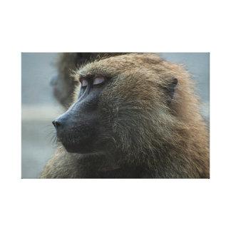 Impressão Em Tela Macaco
