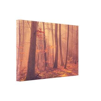 Impressão Em Tela Manhã na floresta no outono