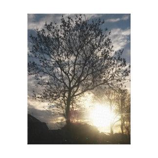 Impressão Em Tela Nascer do sol da árvore do outono