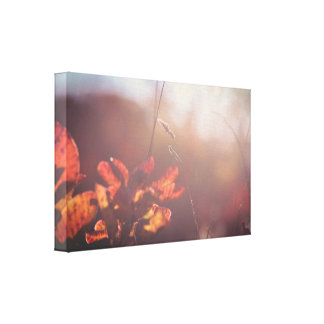 Impressão Em Tela Natureza vermelha do outono