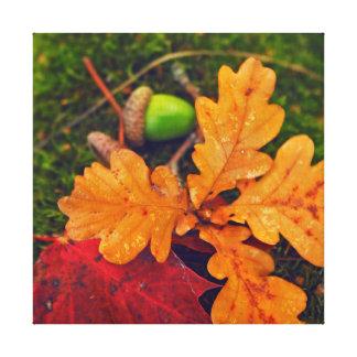 Impressão Em Tela outono brilhante