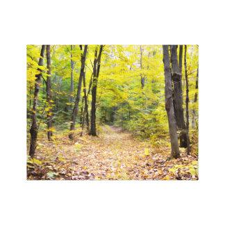 Impressão Em Tela Outono na floresta