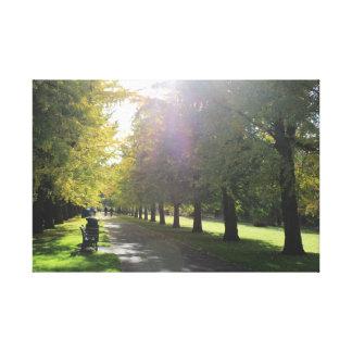 Impressão Em Tela Parque do Bute - árvores do outono