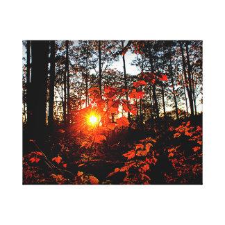 Impressão Em Tela Por do sol do outono