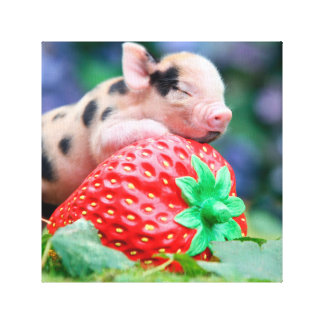 Impressão Em Tela porco da morango