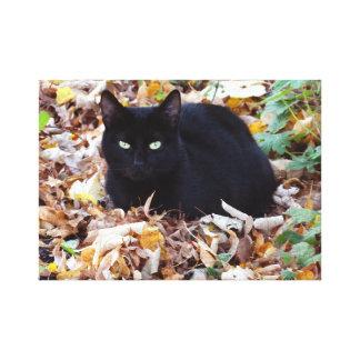 Impressão Em Tela Solteiro da foto do outono do gato preto