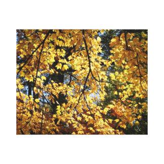 Impressão Em Tela Tarde do outono