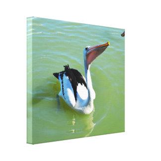 Impressão Em Tela Torta do amor dos pelicanos,