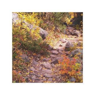 Impressão Em Tela Uma caminhada do outono