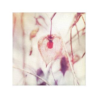 Impressão Em Tela Vagem delicado da semente da planta de lanterna