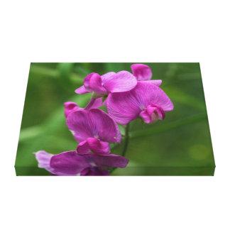 Impressão floral das canvas dos Wildflowers do