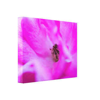 Impressão macro floral das canvas de Absract do