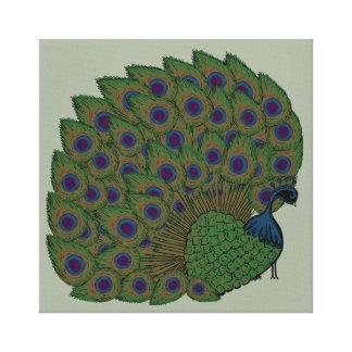 Impressão orgulhoso das canvas do pavão