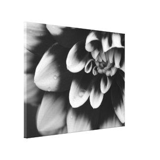 Impressão preto e branco das canvas da flor da impressão em tela