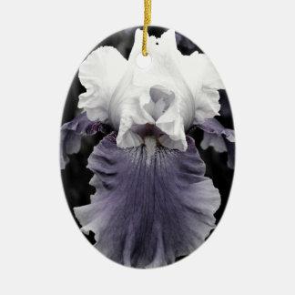 Impressão roxo desvanecido bonito da íris ornamento de cerâmica oval