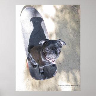 Impressão Skateboarding do Pug (foto)