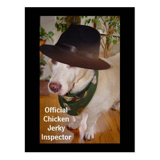 Inspector espasmódico da galinha oficial cartões postais