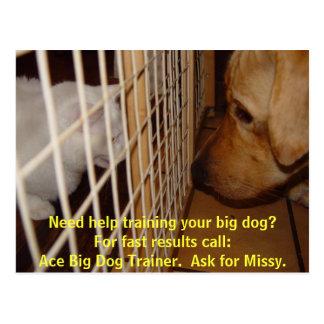 Instrutor de cão grande do ás cartão postal