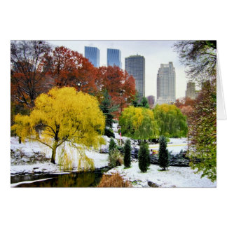 Inverno e queda do Central Park Cartao