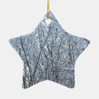 inverno ireish do norte raro ornamento de cerâmica estrela