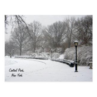 Inverno no Central Park Cartão Postal