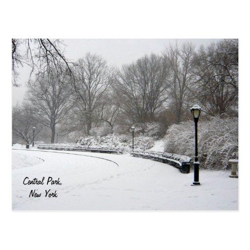 Inverno no Central Park Cartoes Postais