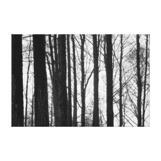 Inverno preto e branco impressão em tela