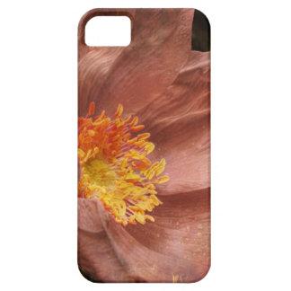 Inverno Rosa Rugosa iPhone 5 Capa