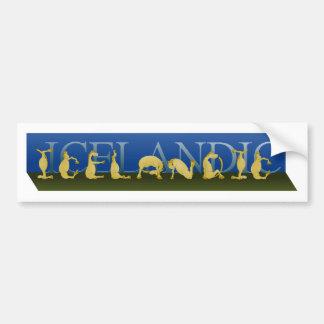 Islandês escrito nos pôneis adesivo para carro