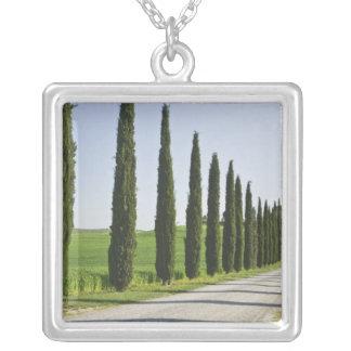 Italia, Toscânia. Linha de árvores entrada de Colar Banhado A Prata