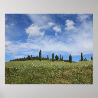 Italia, Toscânia, Val D'Orcia, paisagem com Poster