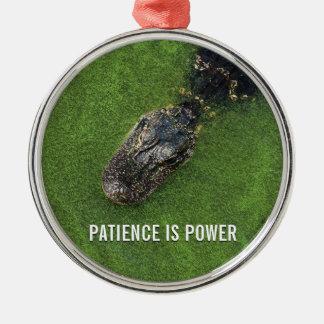 Jacaré • A paciência é poder • Gancho do espelho Ornamento De Metal