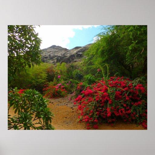 Jardim botânico da cratera de Koko Posters