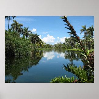 Jardim botânico tropical de Fairchild Poster