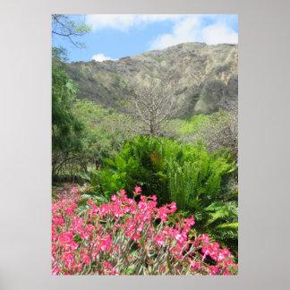 Jardim de rosas do deserto poster