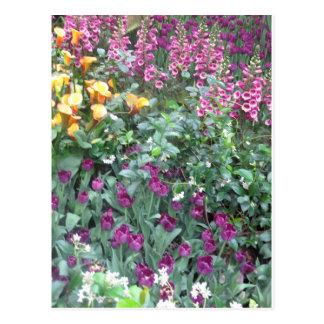 Joaninha G ORIGINAL da flor do jardim da borboleta Cartoes Postais