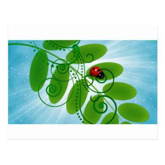 joaninha - ladybird cartão postal